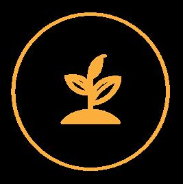 Haarla icons website Plant based